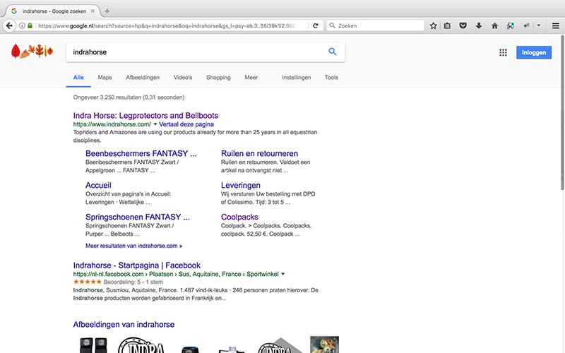 bedrijf op google zetten met Google Mijn Bedrijf